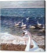 Winter On A Beach In Feodosiya. Crimea Canvas Print