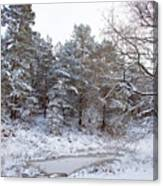 Winter On The Chase Canvas Print
