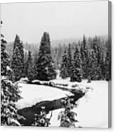 Winter Riverscape Canvas Print