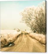 Winter Road Wonderland Canvas Print