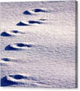 Winter Sand Canvas Print