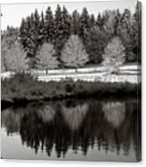 Winter Scene 3 Canvas Print