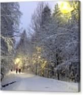 Winter Scene 5 Canvas Print