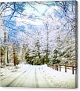 Winter Scene Canvas Print