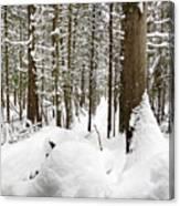 Winter Scene Print Canvas Print