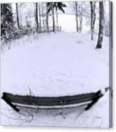 Winter Seat 2 Canvas Print