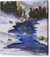 Winter Shades Canvas Print