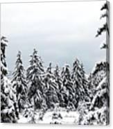 Winter Shangri-la Canvas Print