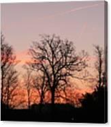 Winter Skies Canvas Print