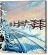 Winter Snow Tracks Canvas Print
