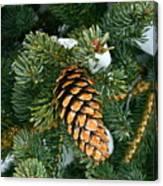 Winter Spruce Canvas Print