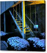 Winter Stairs Canvas Print