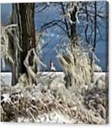 Winter Storm Ashley 2015 #2 Canvas Print