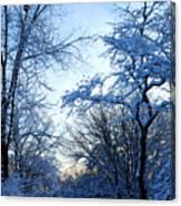 Winter Sunrise II Canvas Print