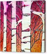 Winter Sunset Birch Canvas Print