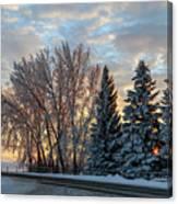 Winter Colors. Canvas Print
