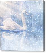 Winter Swan Canvas Print