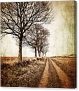 Winter Track With Trees Canvas Print
