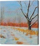 Winter Trail Carter Canvas Print