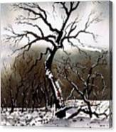 Winter Tree Stainland Canvas Print