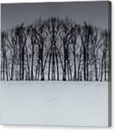 Winter Tree Symmetry Long Horizontal Canvas Print