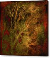 Winter Trees In Gold And Red Canvas Print