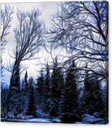 Winter Trees In Sweden Canvas Print