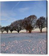 Winter Trees On The Ring Canvas Print