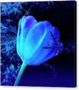 Winter Tulip Blue Theme 2 Canvas Print
