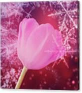 Winter Tulip Red Theme Snow Canvas Print