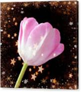 Winter Tulip With Gold Snow And Stars Canvas Print