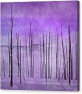 Winter Violet  7913violet Canvas Print