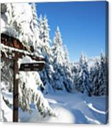 winter way in the Upper Harz Canvas Print