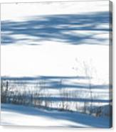 winter weeds SCN M 80 Canvas Print