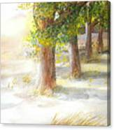 Winter Winds Canvas Print