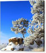 Winter Wonder Land ... Montana Art Photo Canvas Print