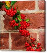 Winterberry 0028 Canvas Print
