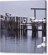 Winterized Canvas Print