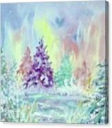 Winter Wonderland Aurora Borealis  Canvas Print