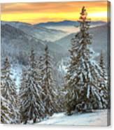 Winterlands Canvas Print