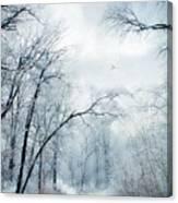 Winter's Cloak Canvas Print