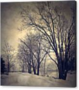 Winter's Dark Thoughts Canvas Print