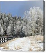 Winters Day In The Mountains Canvas Print