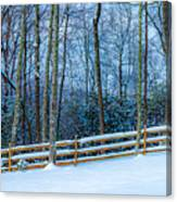 Winters Day - Pisgah Forest Nc Canvas Print