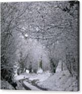 Winters Lane Canvas Print
