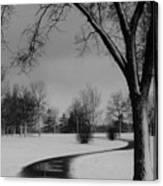 Winter's Path Canvas Print