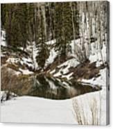 Winters Pond Canvas Print