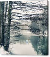 Winter's Reach II Canvas Print