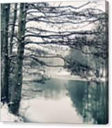 Winter's Reach Canvas Print