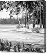 Winter's Tropical Landscape Canvas Print